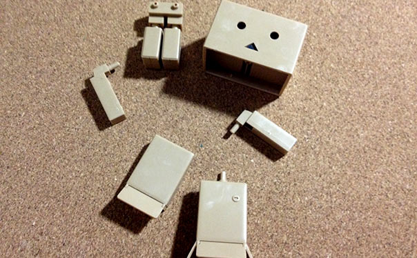 DANBOARD mini PLASTIC MODEL KIT
