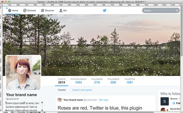 Social Kit - Twitter