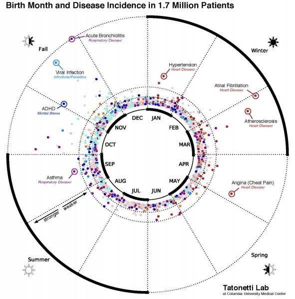 誕生月と疾病リスクの相関関係図