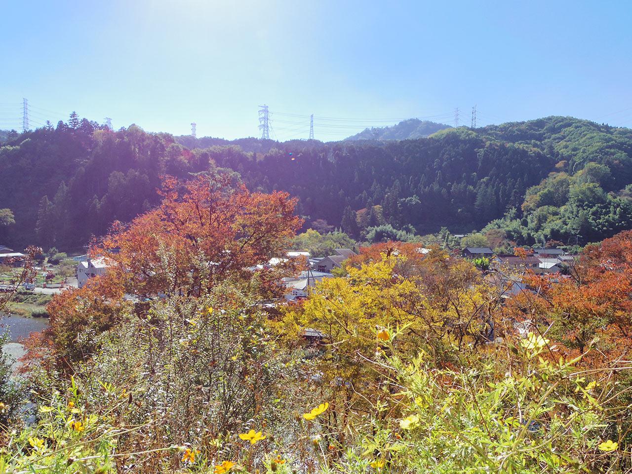 阿伎留神社そばから望む風景