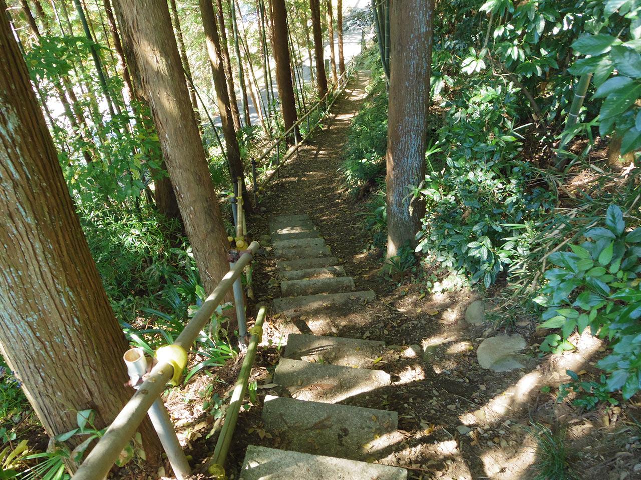 阿伎留神社そばの山道
